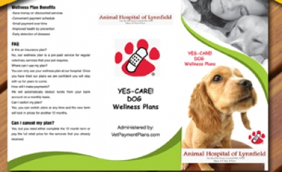 Animal Hospital of Lynnfield